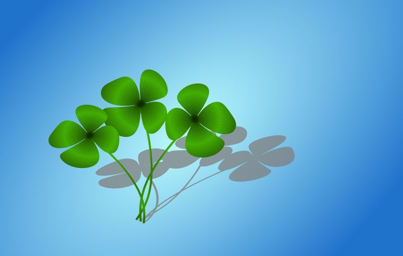 Four leave clovers for luck