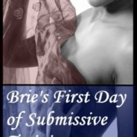 Book review: Brie's First Day of Submissive Training by Red Phoenix