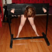 Playdate 3-3: The pillory