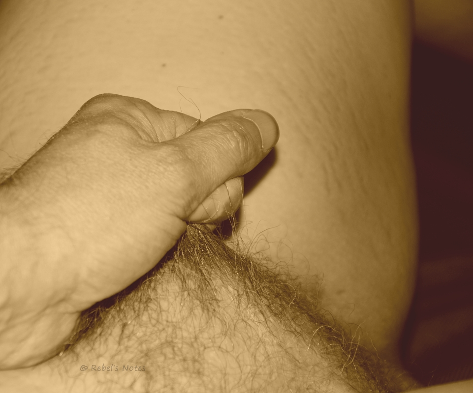An image showing a fist pulling a hand full of pubic hair.