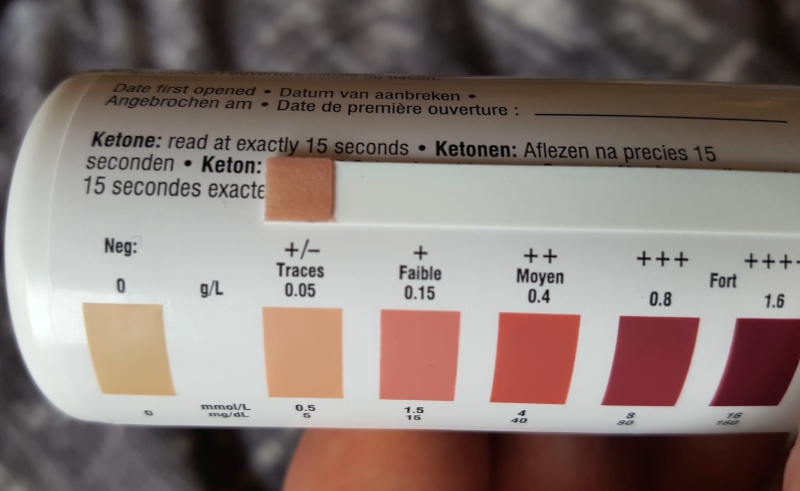 Signs of ketosis in my body.