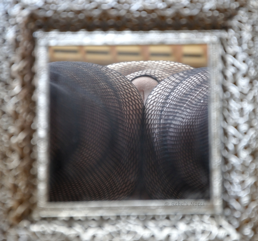A reflection of net panties and my pussy.