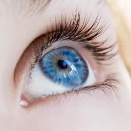 Blue iris in eye