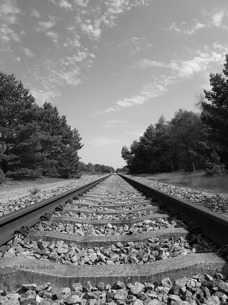 Train tracks in black and white.