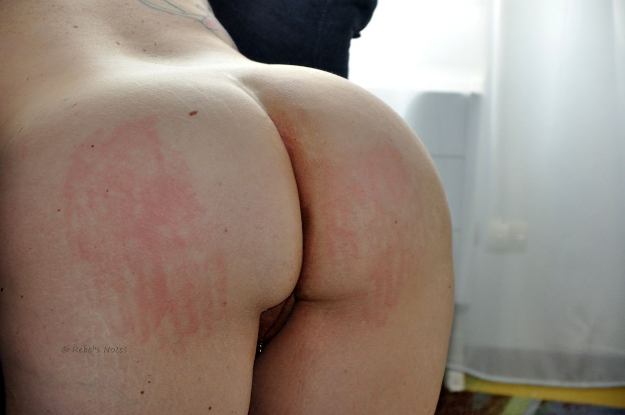 Red handprint on bottom
