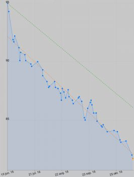 Weight loss 13 november 2016
