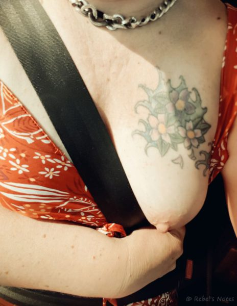 Nipple flash in the car