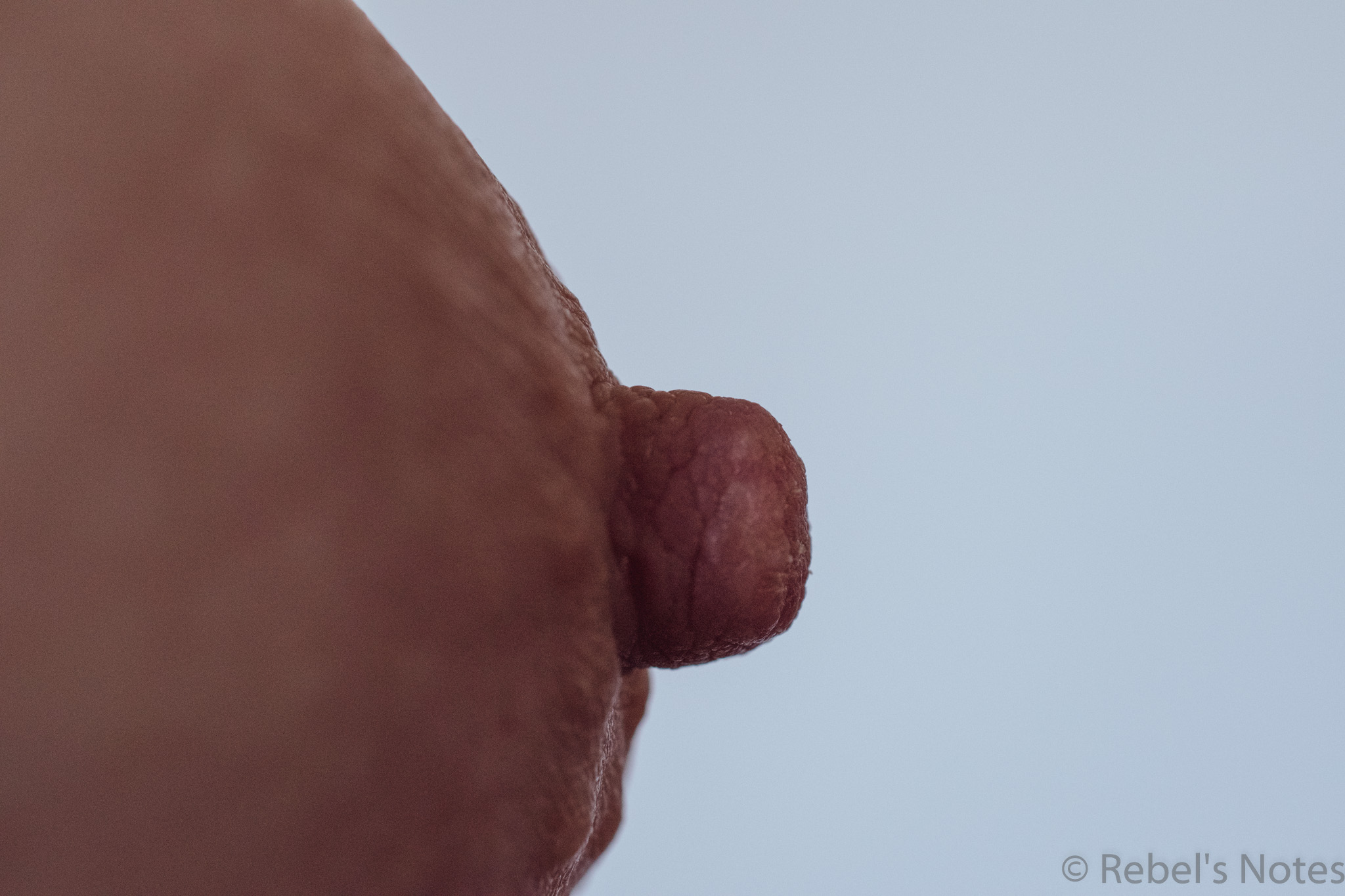 a simple image of my erect nipple, taken from the side against a light background
