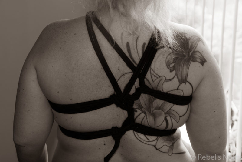 The back tie of the stardust rope harness