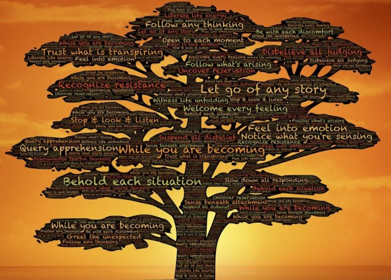 A drawing of a tree with several words and phrases of personal growth written on it.
