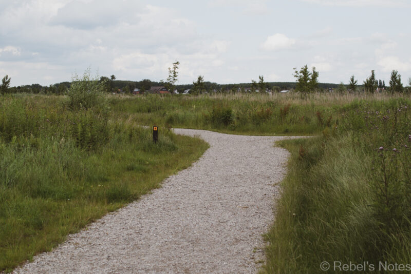 A footpath in a nature area in Barendrecht.