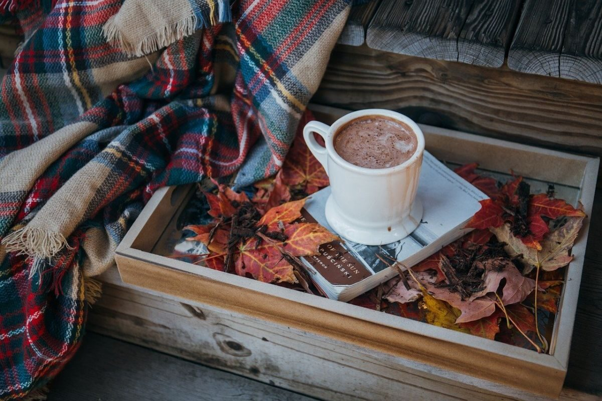 An image showing a tray with a book, autumn leaves and a cup of hot chocolate, with a plaid to the side of it.