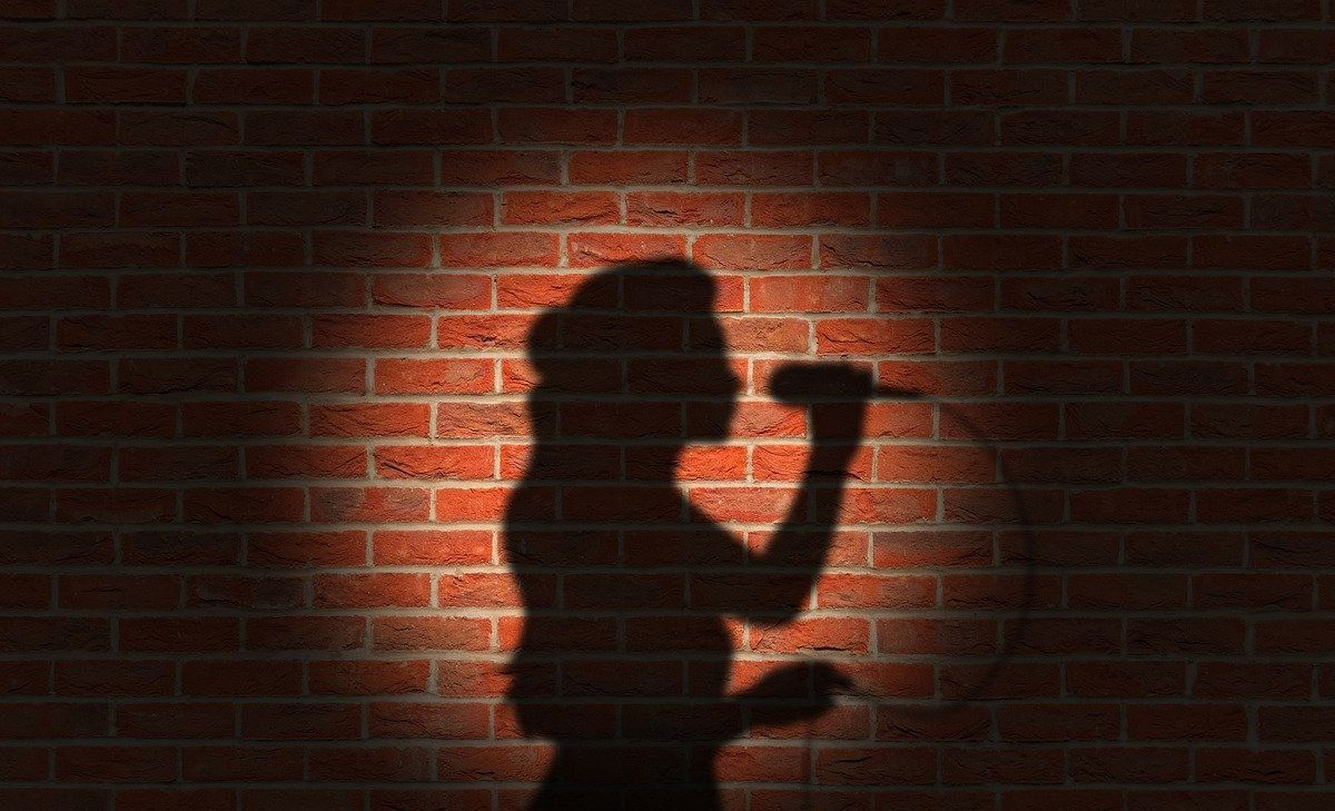 An image of a shadow on a wall and in the shadow is a woman with a microphone, to go with my post that I love to sing along to the music.