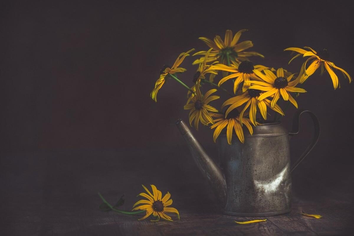 An image of an old iron teapot with yellow daisies in it, one on the table, to go with my post about the regrets in life.